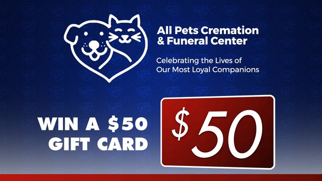All Pets Holiday Contest