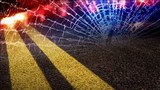 2 vehicle accident temporarily shuts down White Hall Boulevard in Marion Co.